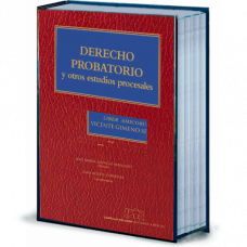 Derecho Probatorio. Liber Amicorum Vicente Gimeno Sendra. Ebook
